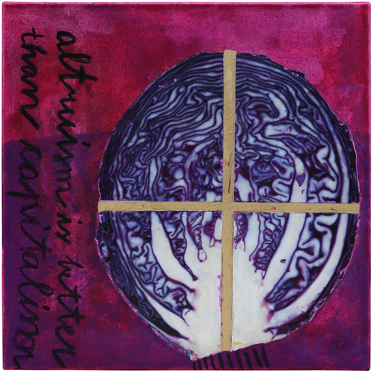 Red cabbage, 2014, mixed media on canvas, 50 x 50 cm
